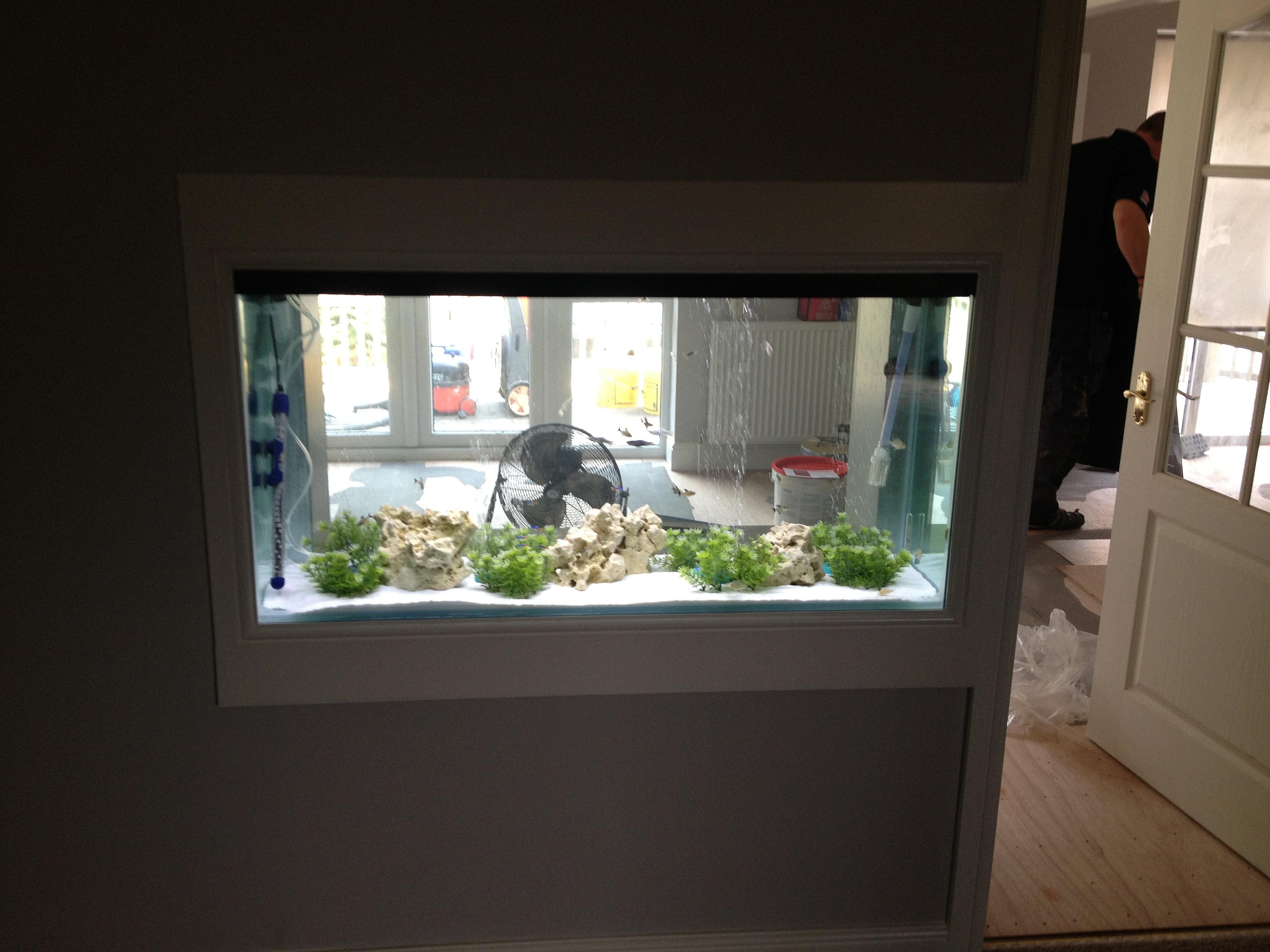 DC Aquariums UK Custom Aquarium And Vivarium Manufacturer - Home aquarium design