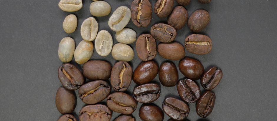 מה ההבדל בין פולי קפה מזנים רובוסטה לערביקה?