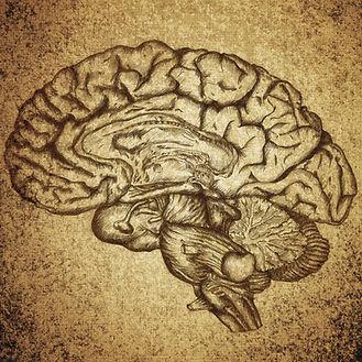 Neurofeedback brain neurotherapy san antonio