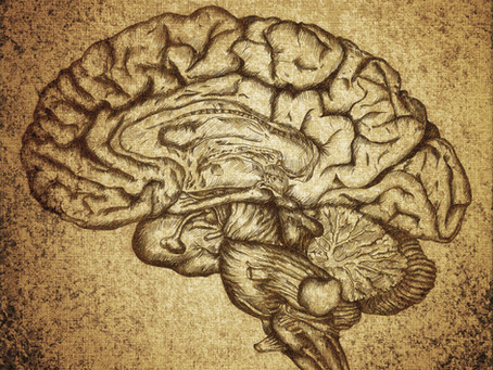 Integrative Neurology:  What if your brain didn't have to age?