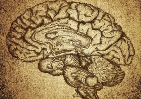 COVID-19 Hi-Jacks Brain Cells
