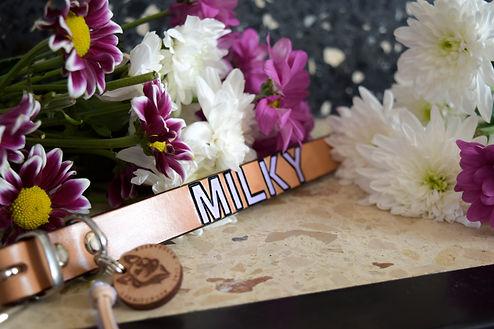 milky.jpg