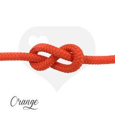Classic Orange.jpg