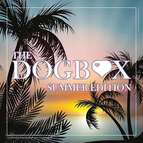 The DOGBOX | Summer Edition LARGE