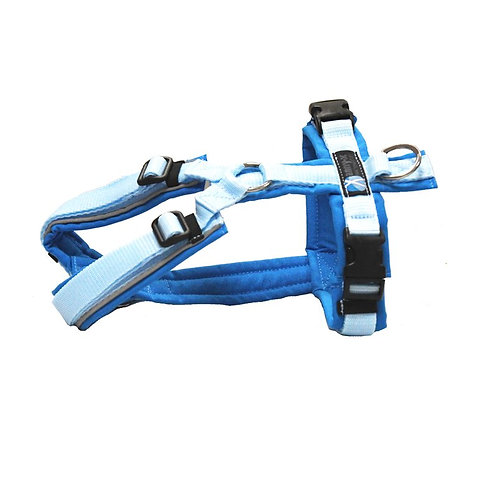 Annyx Protect - Sonderfarbe lichtblau/hellblau, Größe L