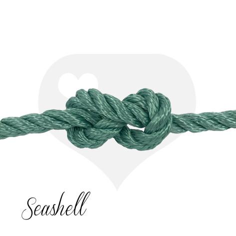 Twisted Seashell.jpg