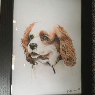 2019 - A4 Framed Drawing
