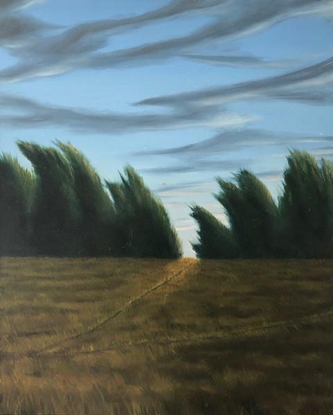 """""""First Light"""" 2004"""