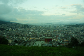 Quito you Beaut