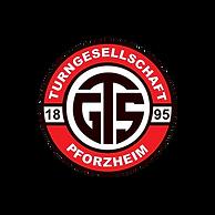 LogoTGS.png
