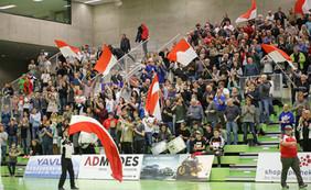 Was machen unsere TGS-Fans in der pandemiebedingten Handballzwangspause?