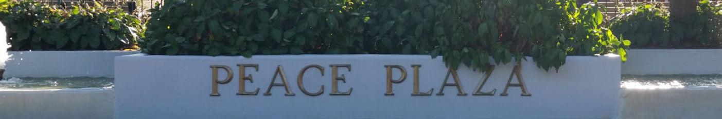 The Peach Plaza hydrangea at the entrance of the Tenafly Public Library.