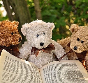 Three stuffed teddy bears reading a book.