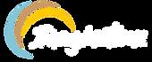 logo colour turcoise.png