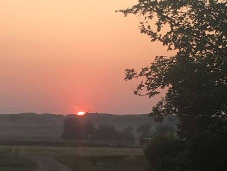 Running to the Sunset
