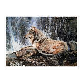 "Stickers ""Wolf Waterfall"" by Beckykidus"
