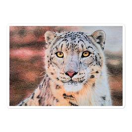 "Stickers ""Snow Leopard"" by Beckykidus"