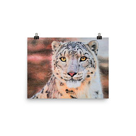 "Poster ""Snow Leopard"" by Beckykidus"