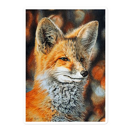 """Stickers """"Bright Side of the Red Fox"""" by Beckykidus"""