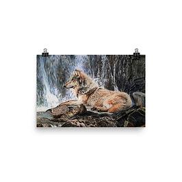 "Poster ""Wolf Waterfall"" by Beckykidus"