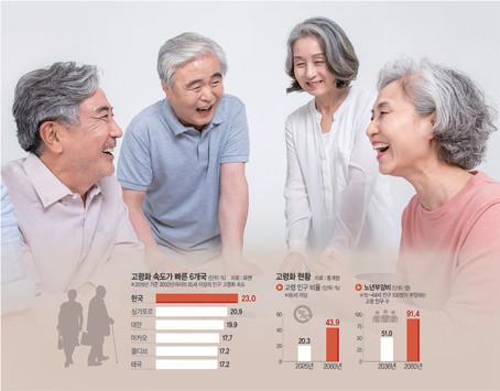 현장지식 최고조 때 은퇴는 사회손실… '위즈덤 크리에이션'이 답이다