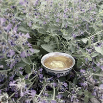Music Monday! We Drink Tea to Beat Poetry... Week of 6/14/21