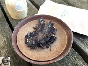 2012 Fu Ding Shou Me White Tea from Path of Cha