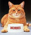 Morris The Cat 9 Lives Cat Food