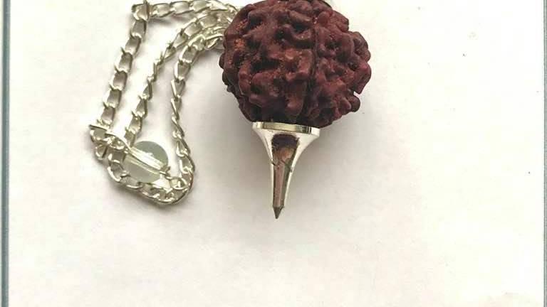 Rudraksha Seed Pendulum