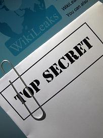wikileaks d.jpg