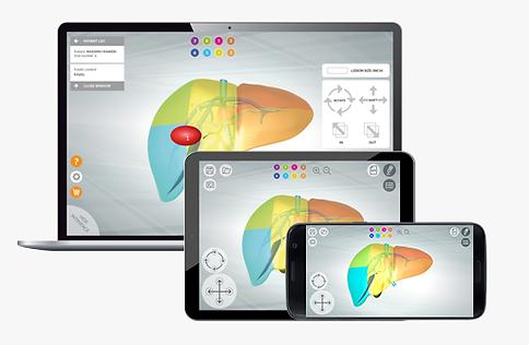 MEDICAL-NOTE | LIVER-NOTE desktop, tablet & smartphone