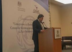 Conferencia Internacional sobre el Consejo de Seguridad de las Naciones Unidas
