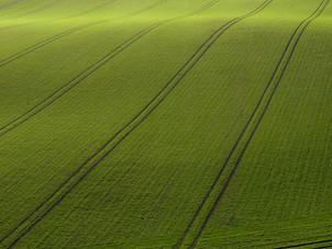 気候変動危機への対応と環境デュー・ディリジェンス