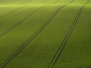 Mening van Arial van Green Field