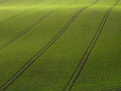 Arial Ansicht von Green Field