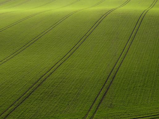 Eco-friendly ways to manage your farm