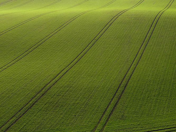 Arial pohled na zelené louce