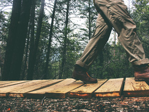 15 CREATIVE WAYS TO REPURPOSE FALLEN TREES