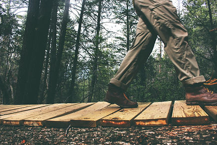 Image of man walking on a boardwalk thru the woods.