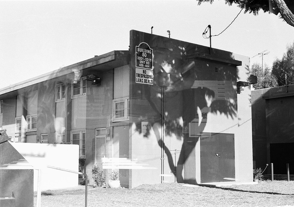 """A high-contrast, black-and-white image of an industrial, two-story building. Near the center of the composition, a palm tree casts a dramatic shadow on the entire side of the building, where a """"no trespassing"""" sign is visible."""