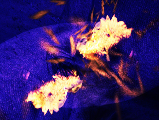 Mørkeblødt om 'Tænker På Dig'