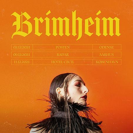 Brimheim tour annoncering.jpeg