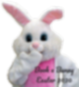 Easter%20Bunny2_edited.png
