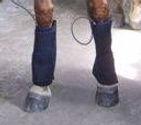 Curavet PEMF leg wrap