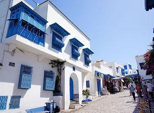 チュニジア・チュニスの写真