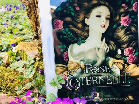 #PLIB2021 Rose éternelle - Ophélie Duchemin