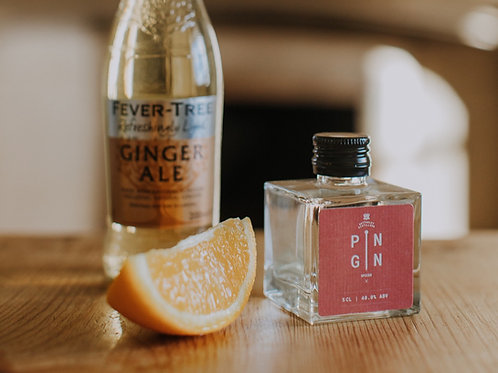 Spiced Pin Gin 5cl