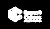 EXPERT CURSOS - Logos RGB-06 - SEM FUNDO