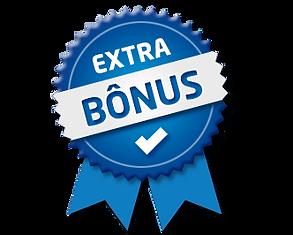 Bonus-2.png