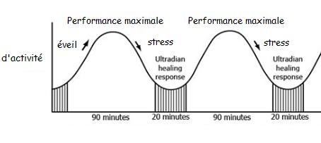 Anti-stress: respectez votre rythme naturel